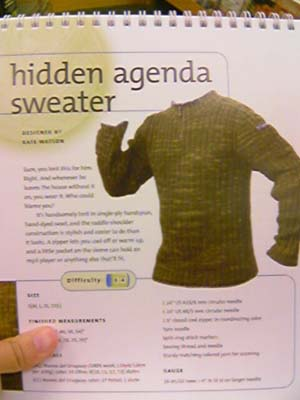 Men's hidden agenda sweater